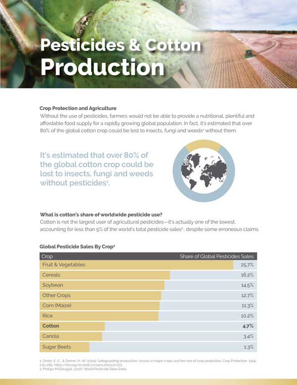 View Pesticides and Cotton Production Document