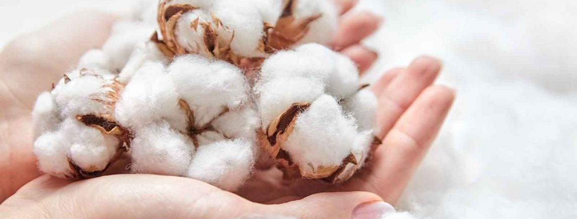cotton-in-hands